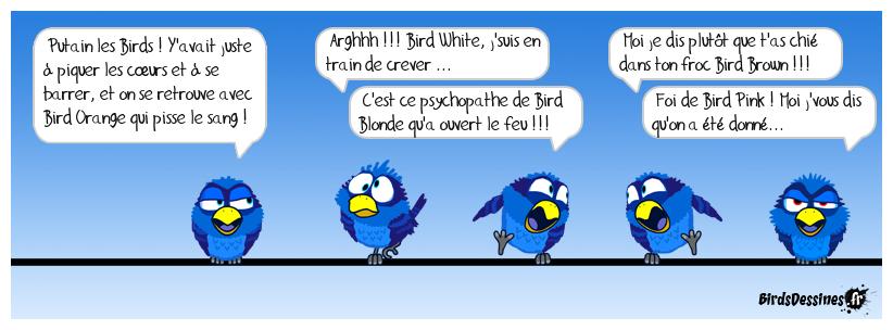 réservoir birds !!!