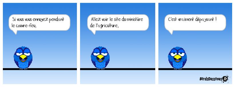 Le terroir en ligne