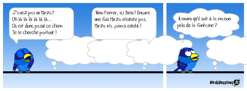 🐕 En direct du paradis... 27 🐶😇
