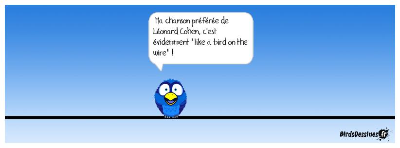 comme un oiseau sur le fil
