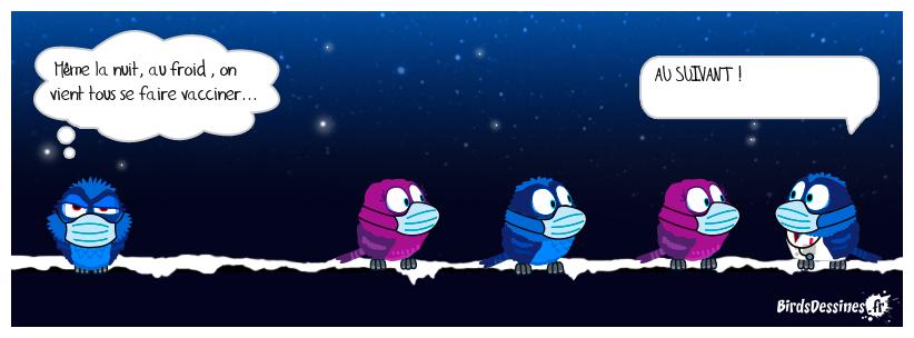 La nuit les queues sont bleues