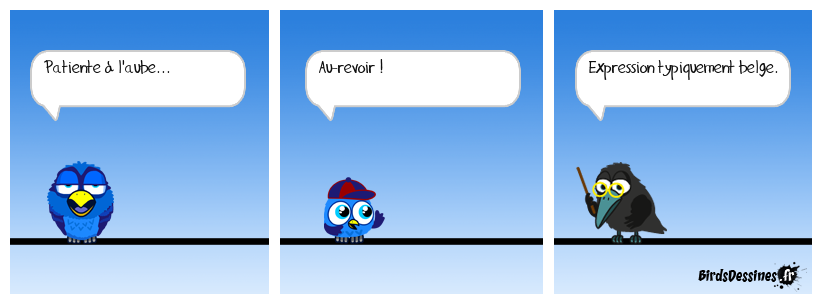 Verbi Parlons belge - 3