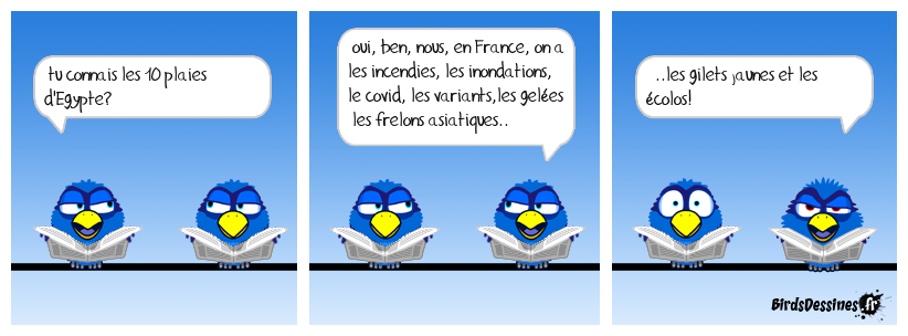 C'est la plaie!