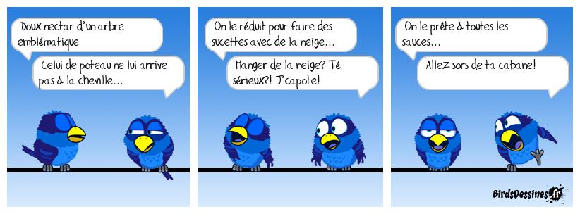 Verbi - Parlons québécois - 7