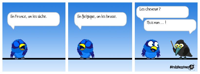 Verbi Parlons belge - 8