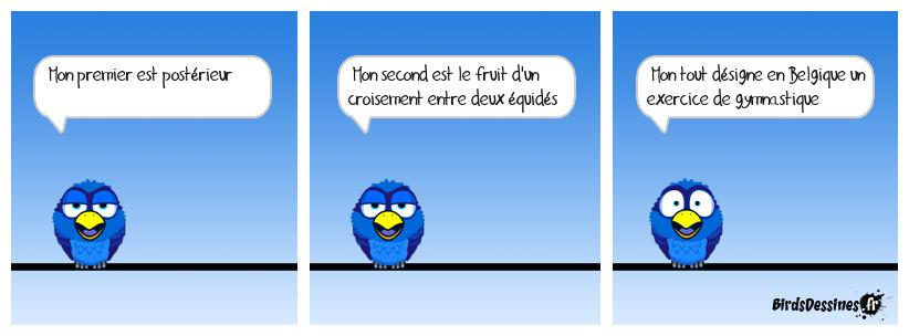 Verbi Parlons belge - 9
