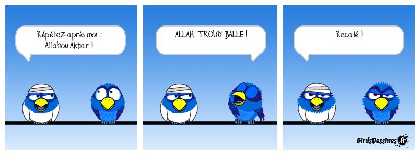 Le djihad pour les nuls