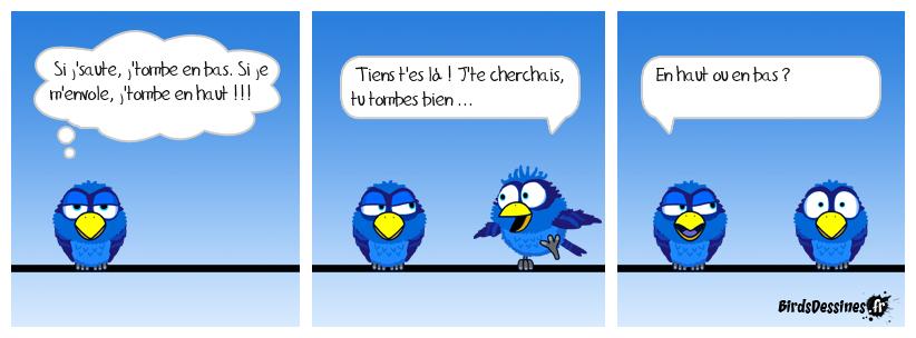 le bird qui tombe à pic !