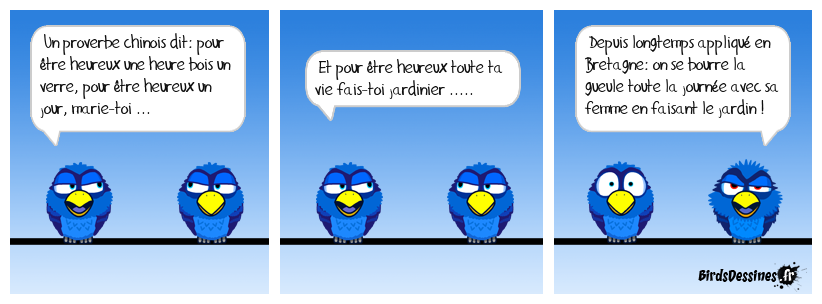 Proverbe Sino-Breizh