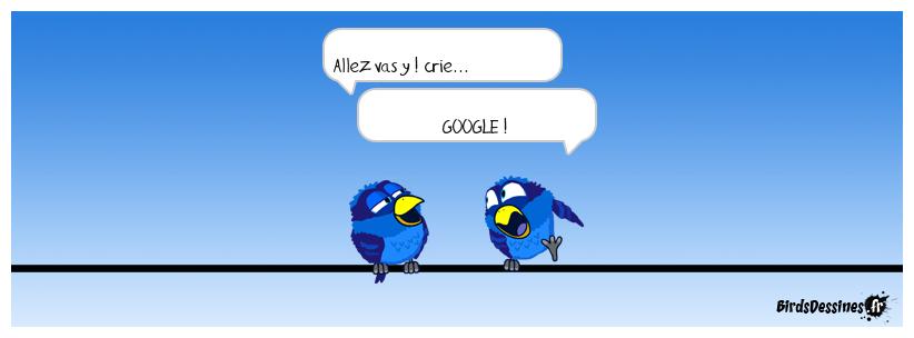 ALLEZ  GO !
