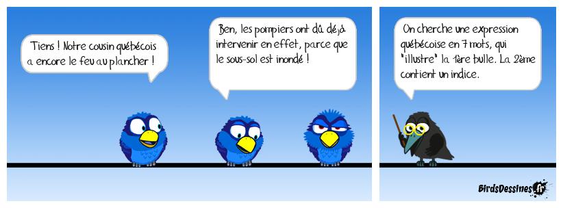 Verbi expression québécoise 04 (clin d'oeil à Diane)