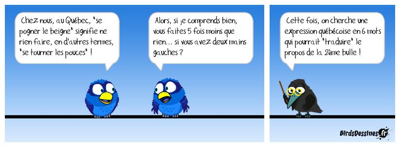 Verbi expression québécoise 05 (fin de la série)