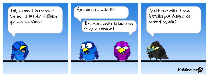 Verbi Parlons belge - 17