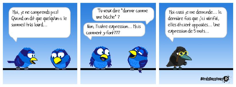 Verbi - Parlons québécois - 18