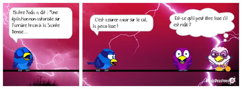 🤔 Le dicton de Mister blues... 353 🙄😍