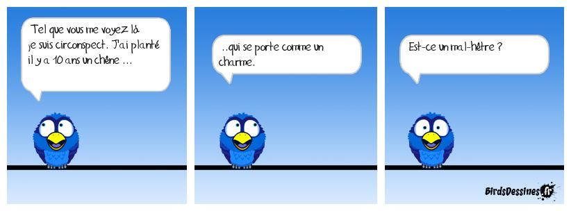 Bd forestière.