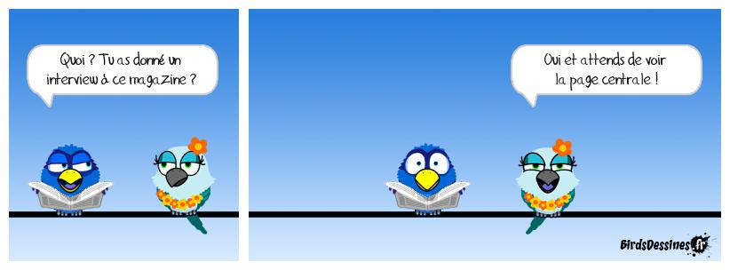 Playbird