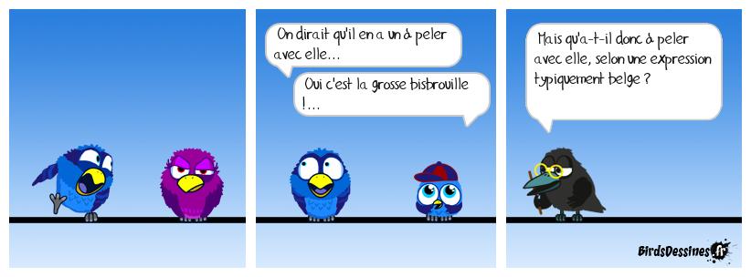 Verbi Parlons belge - 42