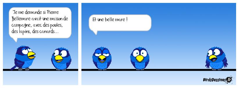 🤔 Le bird penseur 🦆🐔