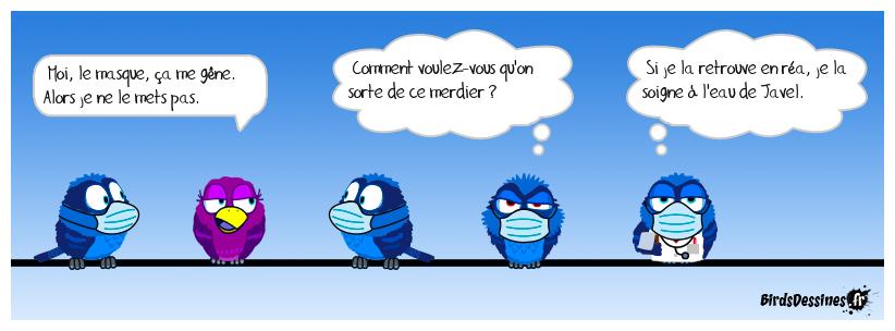 Q. I. de laitue 🙄