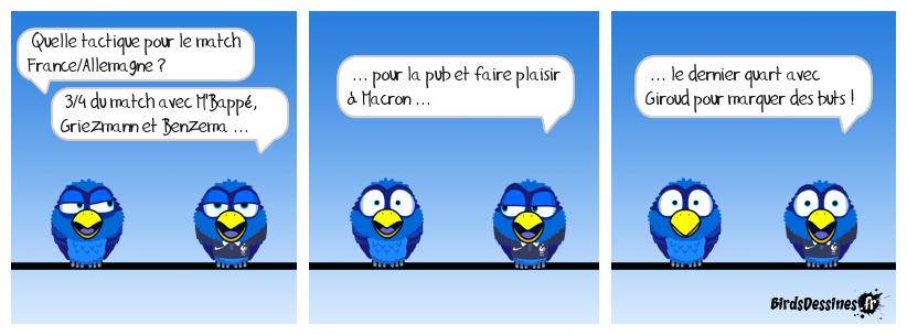 Pigeons des villes et girouettes Deschamps !