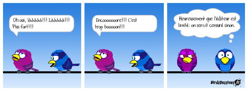Métabirds 02