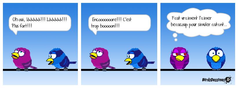 Metabirds 04