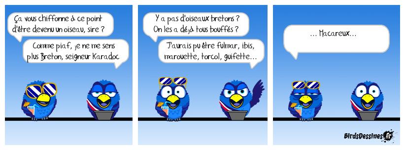 Kaamelott 34 : Les oiseaux