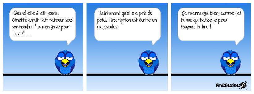 bd toute con