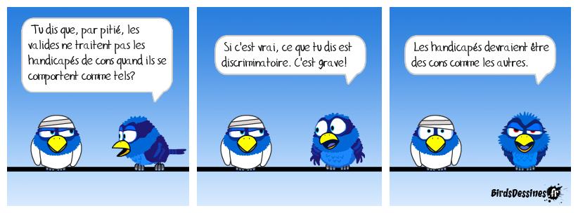 Métabirds 06