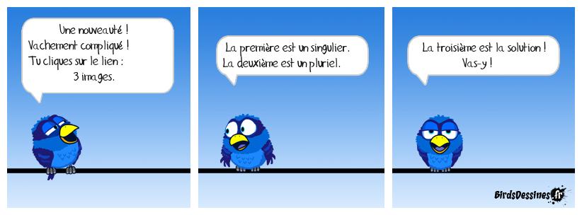 Le pluriel des Birds N° 422