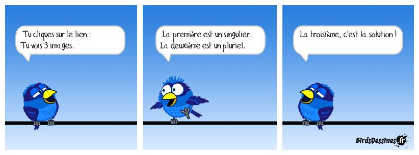 Le pluriel des Birds N°423