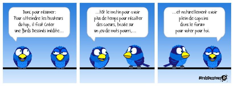 Métabirds 09