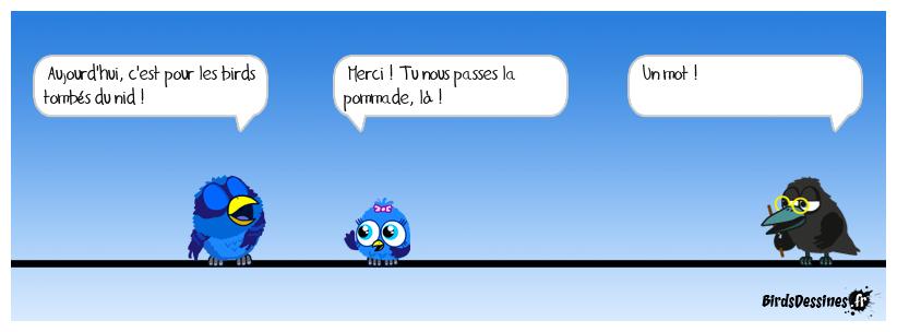 verbinette pour les p'tits birds !