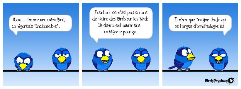 Métabirds 14