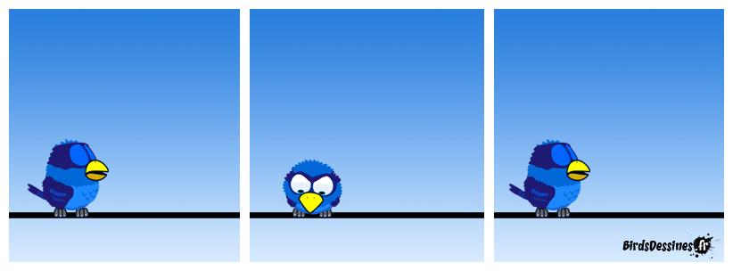 Fin du one-bird show.
