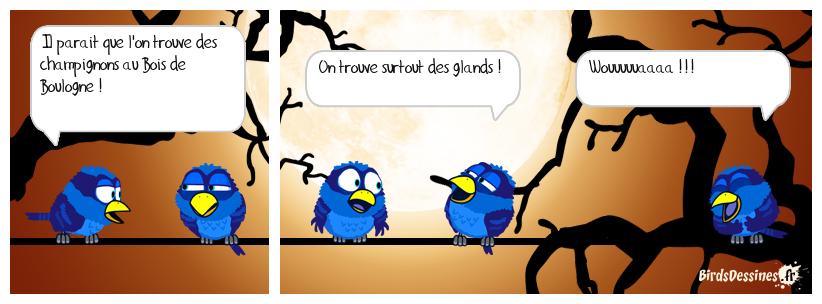 🍄 Promenons nous dans les bois... 🤣🎶